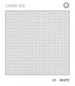 COMBI-420-01
